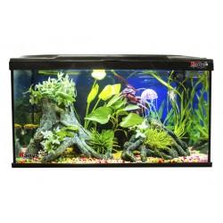 Kit Aitana Fish