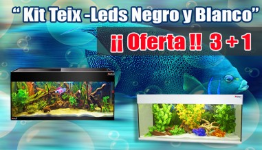 Oferta 3+1 Kit Teix Leds
